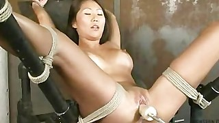 bdsm big-tits boobs dildo domination fuck korean natural pussy